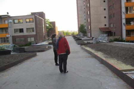 Greening-public-spaces1