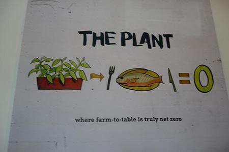 John Edel, The Plant