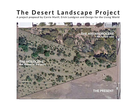 The Desert Landscape Project