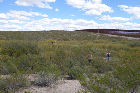 Working with Postcommodity on the Repellent Fence